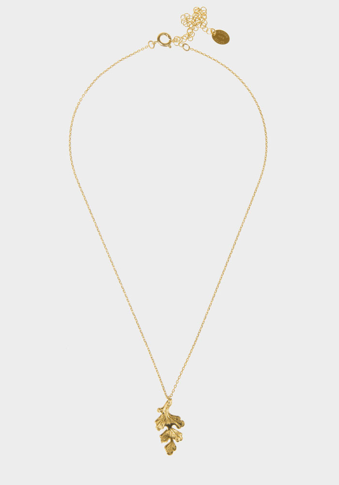 Collier Windsor small